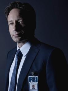 Mulder2016
