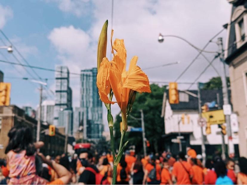 今年のカナダデーは中止?先住民問題とオレンジ色シャツのマーチ